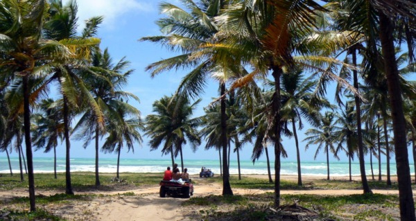 Beach hopping buggy tour